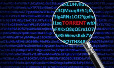torrent india block